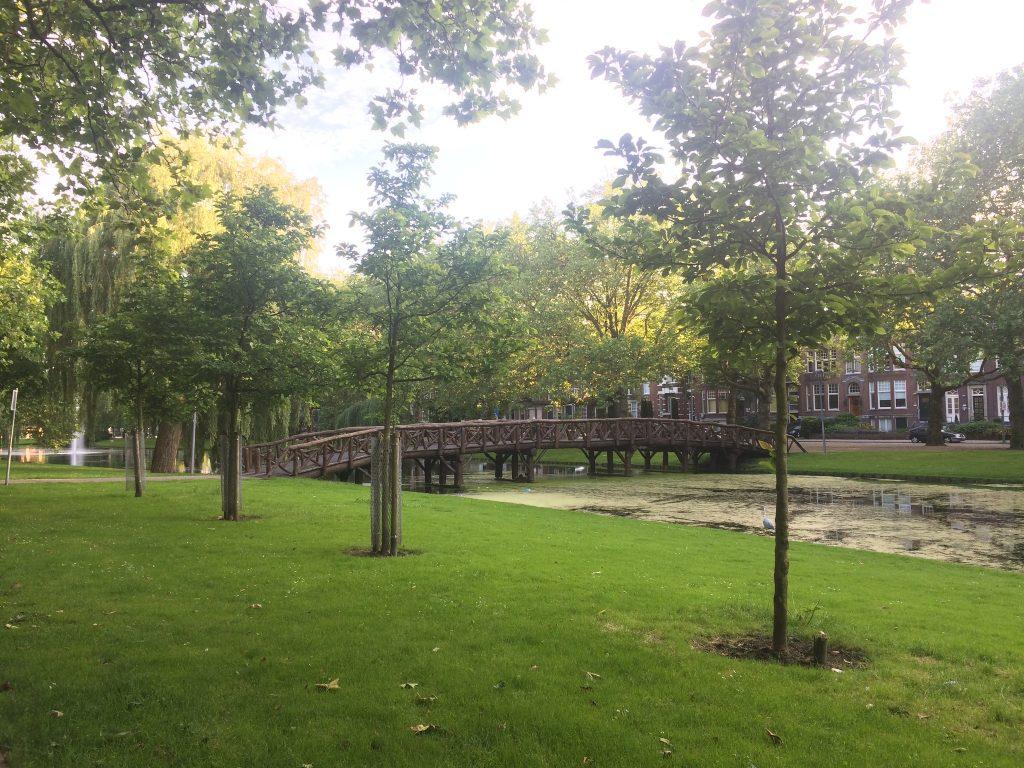500m2 kantoorruimte Heemraadsingel 56 Rotterdam Park voor de deur